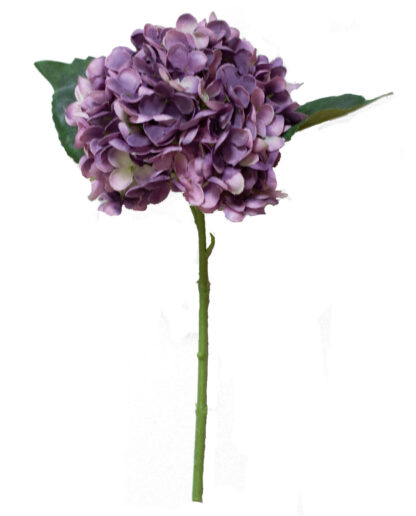 Hydrangea Stem in Purple