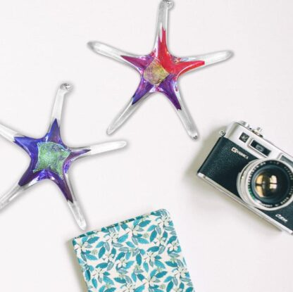 """Luke Adams Hand-blown Glass Starfish 5"""""""