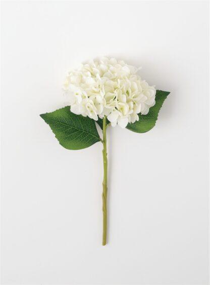Hydrangea Stem in White
