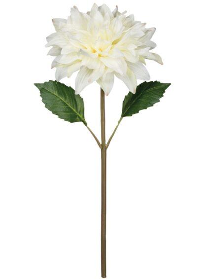 Dahlia Stem in White
