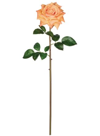 Open Rose Stem in Orange