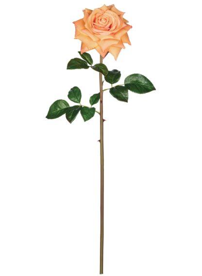 Open Rose Stem in Orange