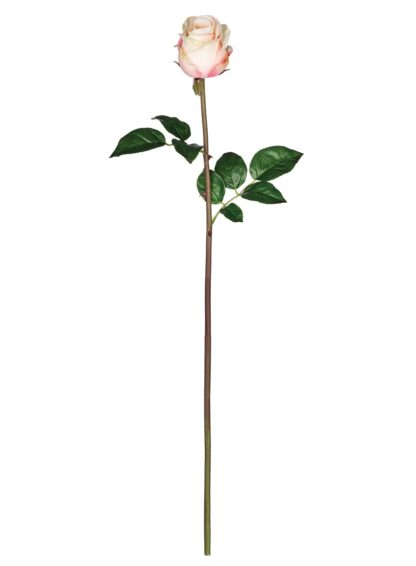 Rose Bud Stem in Red