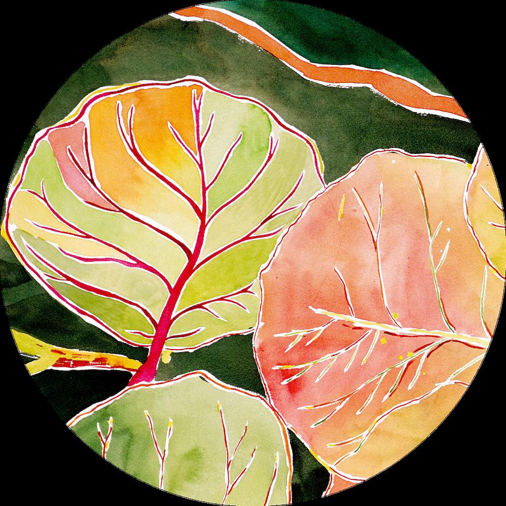 tropical hand-painted tableware