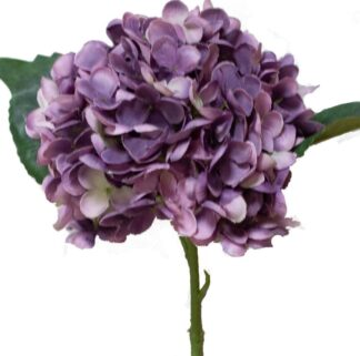 Hydrangea Stem in Purple/White