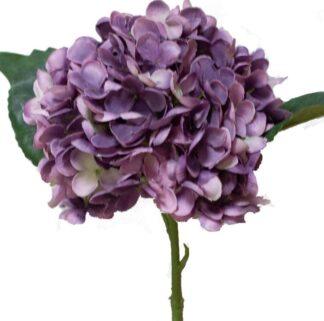 Hydrangea Stem in Purple/Blue