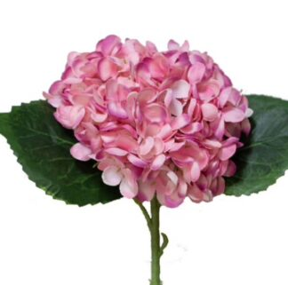 Hydrangea Stem in Rose Pink
