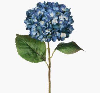 Hydrangea Stem in Dark Blue