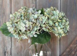 Hydrangea Stem in Green/Purple