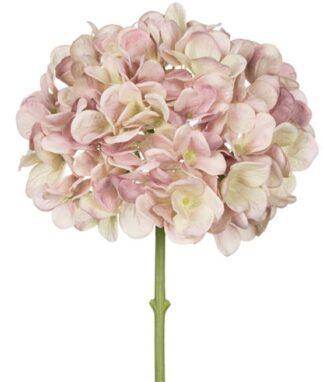 Hydrangea Stem in Creamy Pink