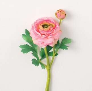 Ranunculus Stem in Light Pink