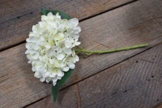 Hydrangea Stem in Lace White